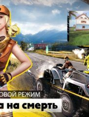 Free Fire Battlegrounds на ПК на playmarket-pk.ru